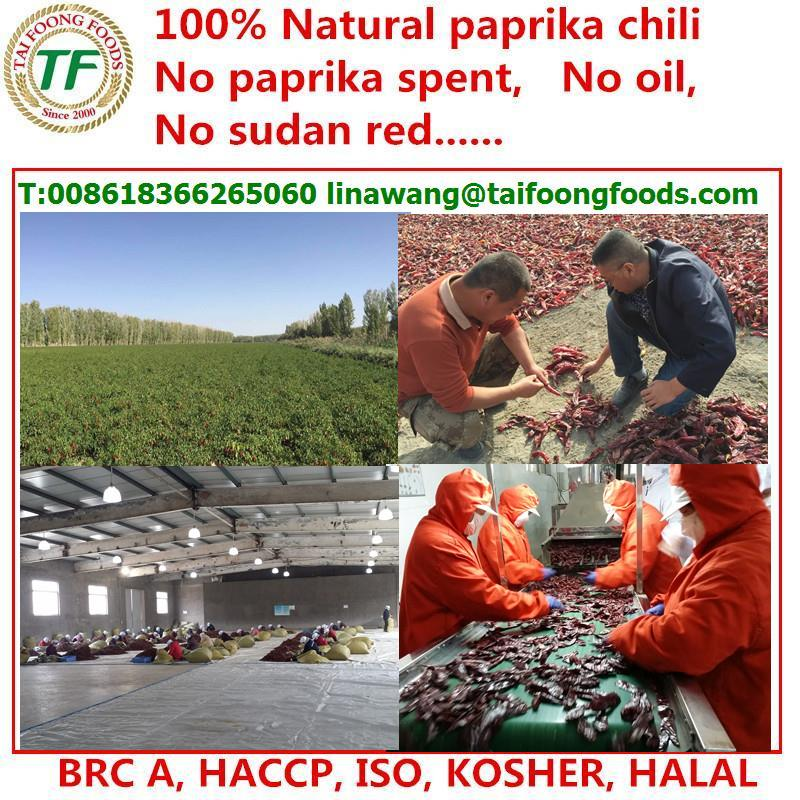 chilis sweet paprika xinjiang base
