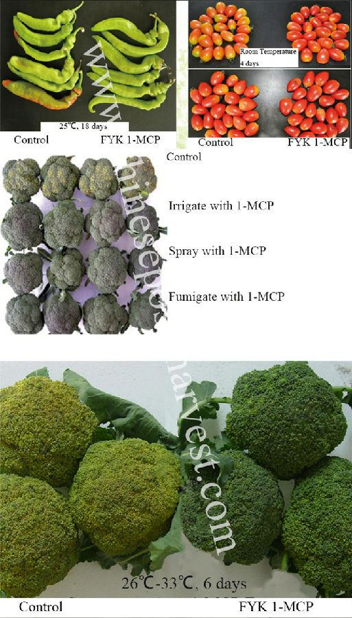 1-MCP Oil Suspending Agent for vegetables.jpg