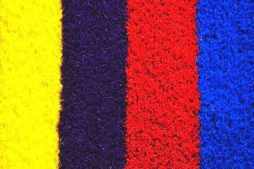 rainbow grass.jpg